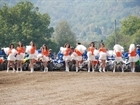 """ATV CHALLENGE CUP 2011"" 16-17 APRIL, TROYAN"
